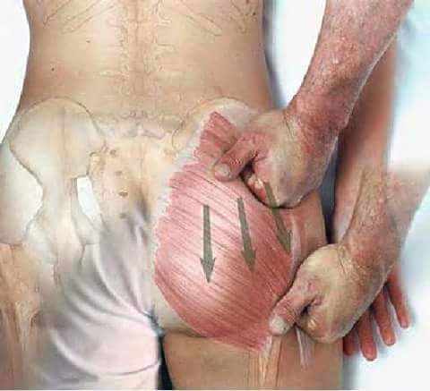 Fisioterapia y Rehabilitacion8