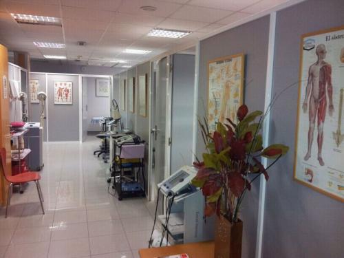 Fisioterapia y Rehabilitacion1